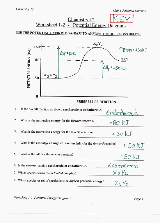 Bohr Diagrams Worksheet - Home for HASPI, San Diego's Health and ...